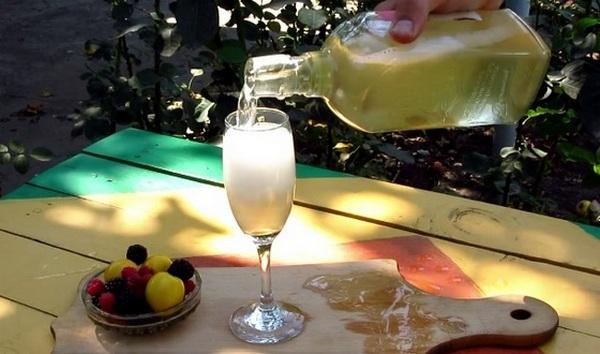Шампанское из листьев смородины