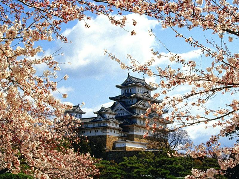 Япония - страна Восходящего солнца!