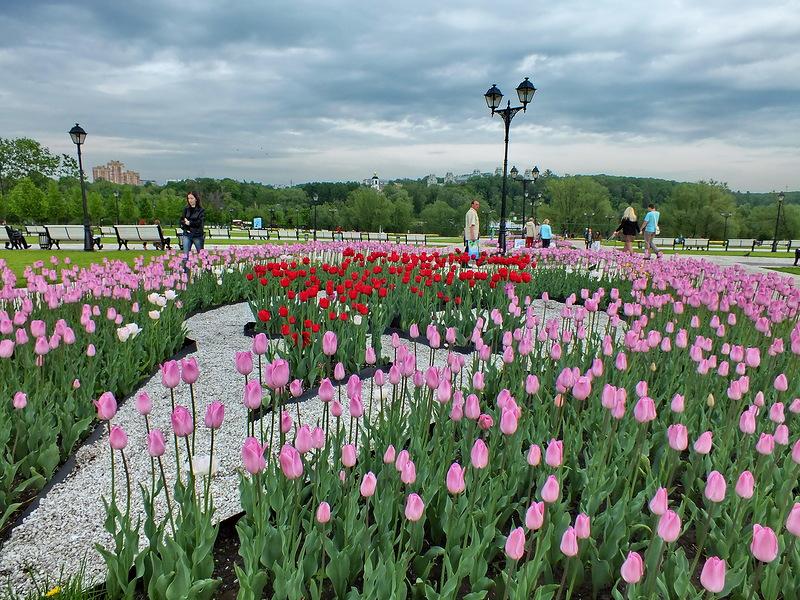 Дворцово-парковый комплекс в Царицыно
