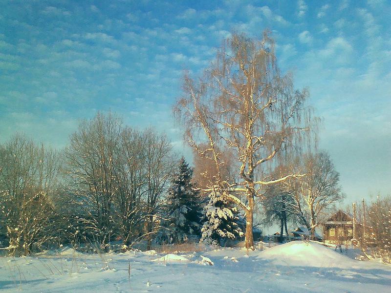 Красивые фотографии зимы! Зима тоже бывает нежной!