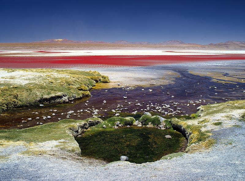 Потрясающие пейзажи Боливии, Лагуна Верде, Колорадо, Фламинго