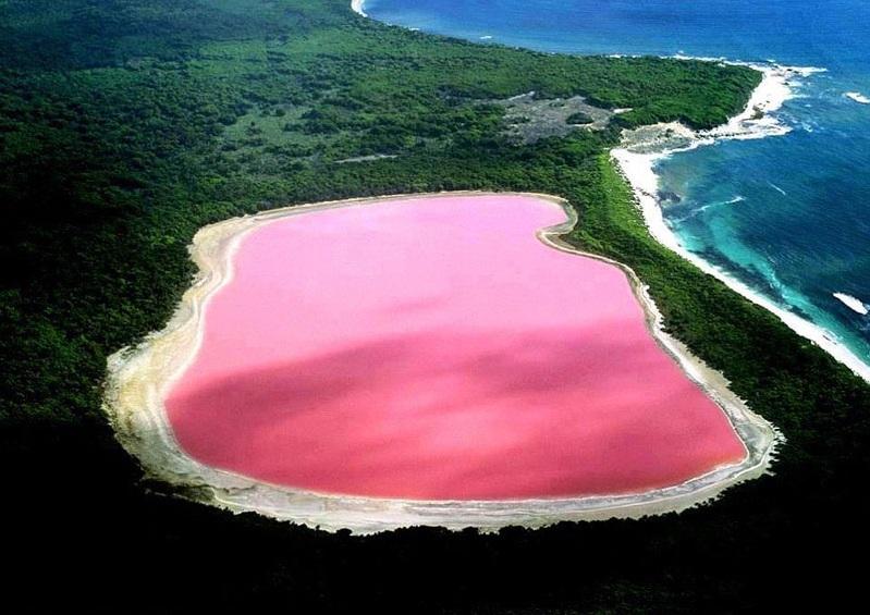 Озеро Хиллер (англ. Hillier) розовое озеро, созданное природой!