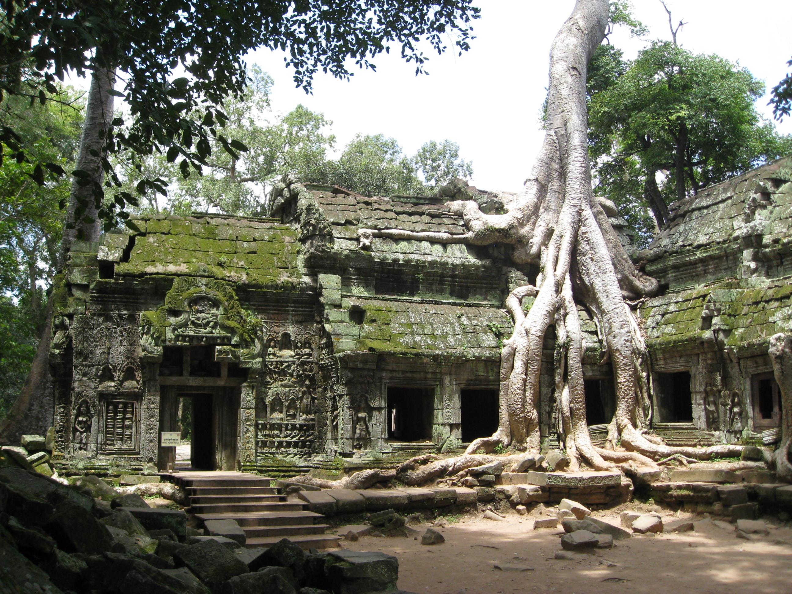 Angkor Wat - Древний Храм Ta Prohm в Камбодже!