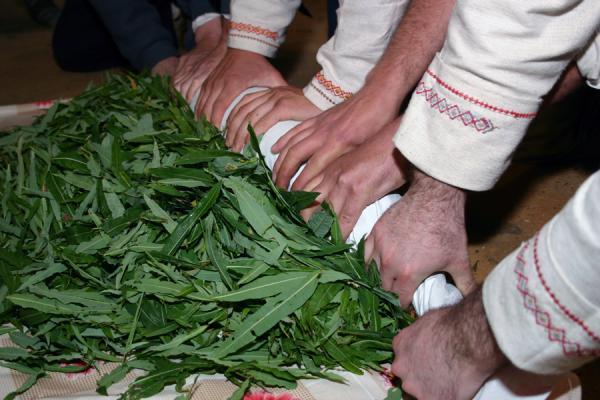 Заготовка Иван-чая, кипрея