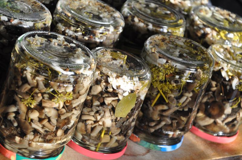 Маринованные грибы -опята