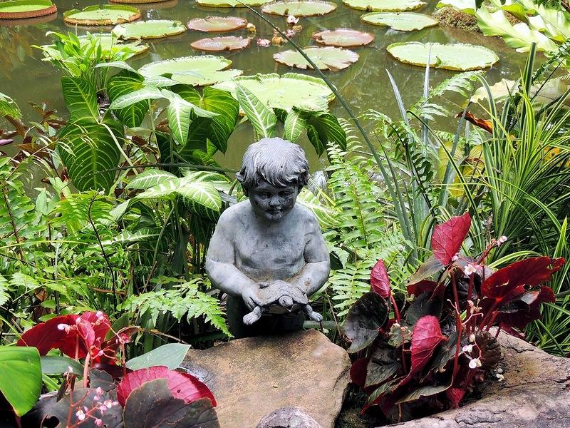 Ботанический сад Сингапура.