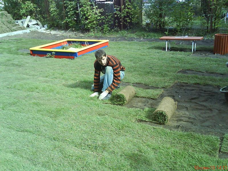 Озеленение участка с помощью рулонного газона