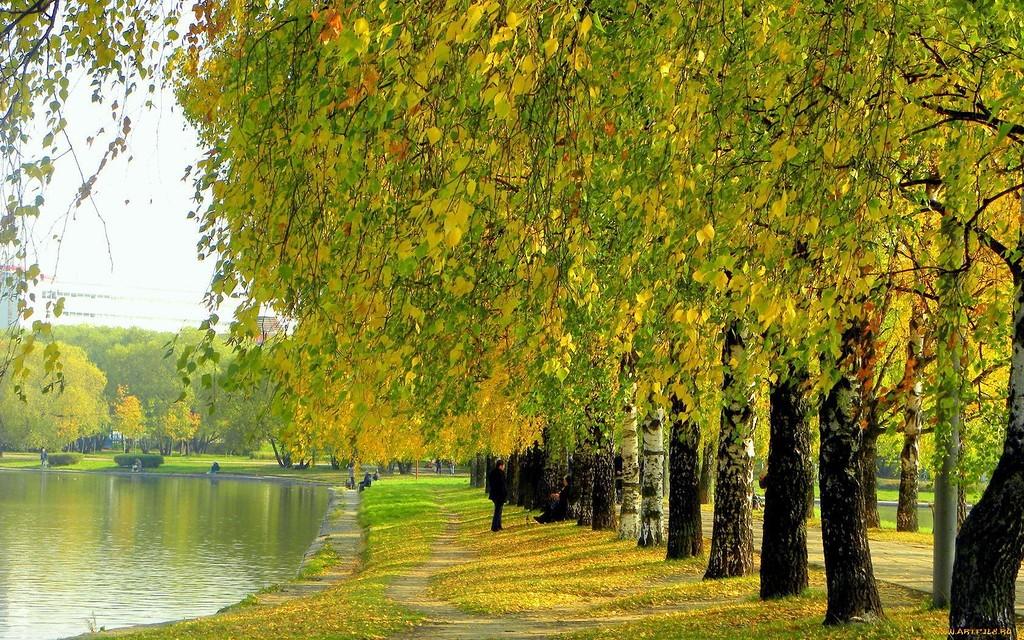 Осень, ты на грусть мою похожа