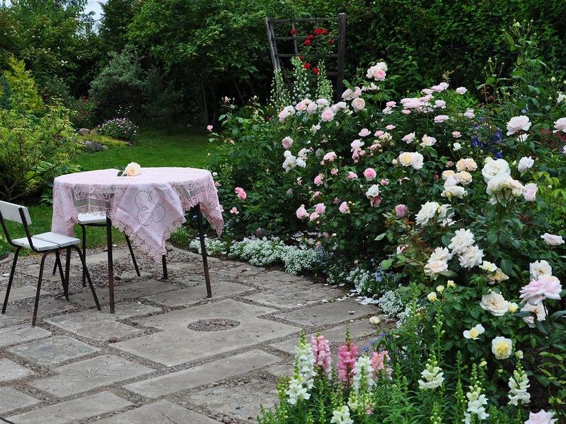 Невероятно красивый сад на Карельском перешейке