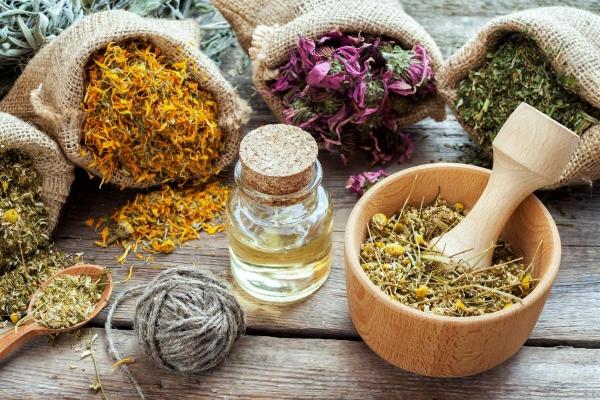 Лекарственные травы. Полезные советы