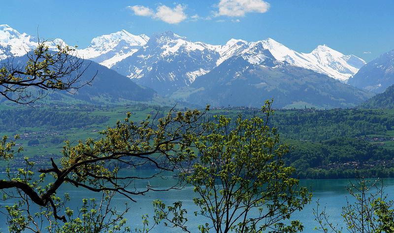 Весна в Альпах. Швейцария