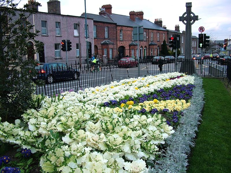 Ирландия, страна вечной весны и красоты  Вечерний Дублин