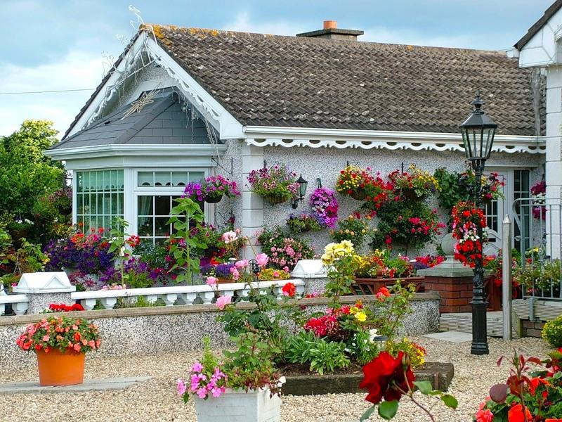 Ирландия, страна вечной весны и красоты  36