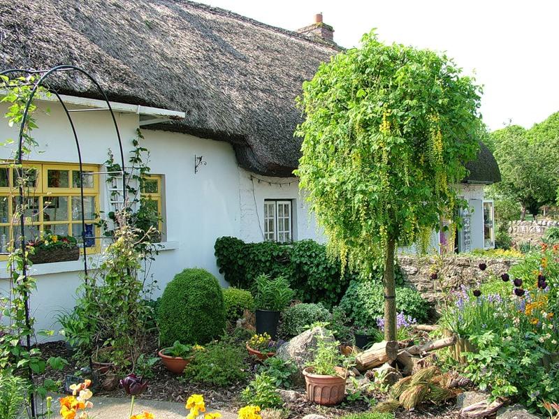 Ирландия, страна вечной весны и красоты  37