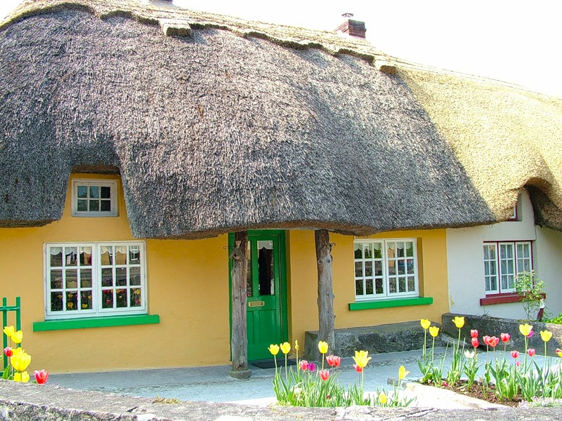 Ирландия, страна вечной весны и красоты  40