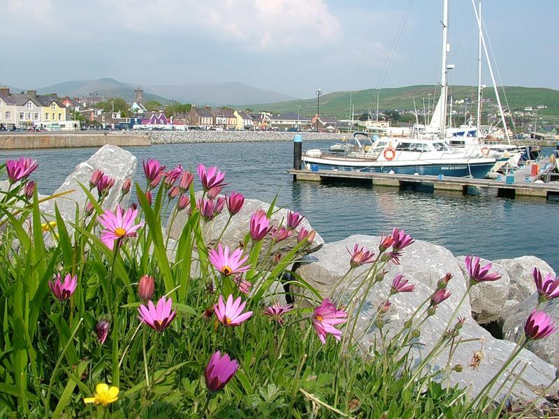 Ирландия, страна вечной весны и красоты  42