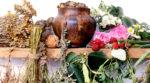 Старинные названия трав и рецепты из них